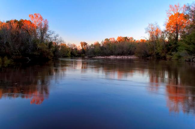 The Flint River - Macon County, GA